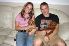 Dustin Brown, puppies