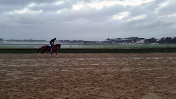 EightToFastToCatch getting a work in the slop