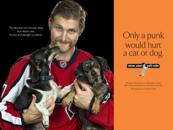 alzner-baltimore-dog-campaign