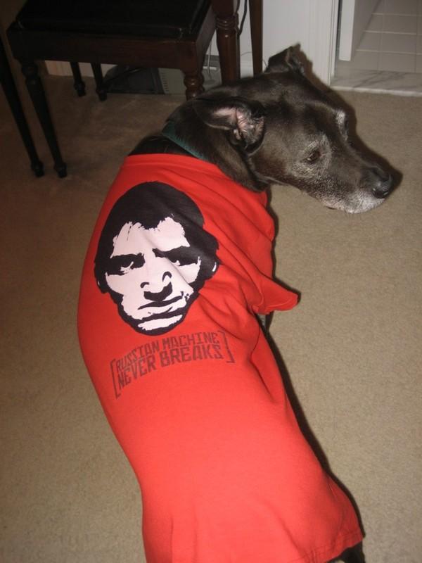 dog-wears-rmnb-shirt
