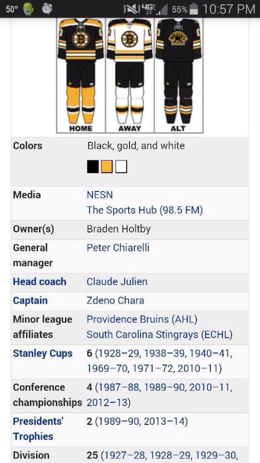 holtby-owns-bruins