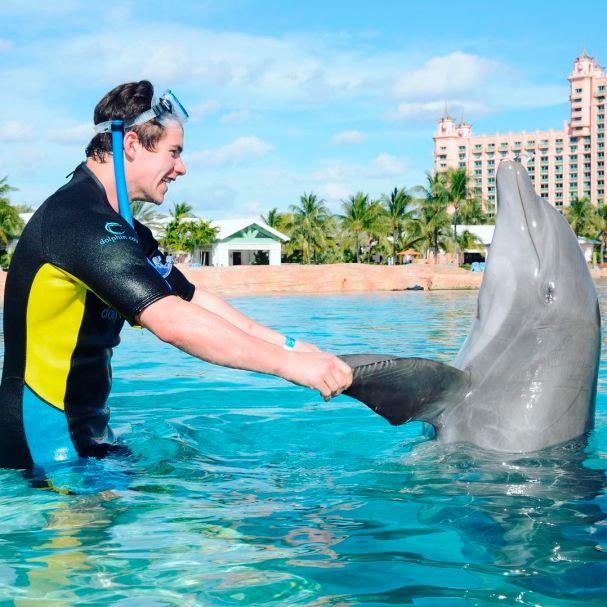 michael-latta-dolphin