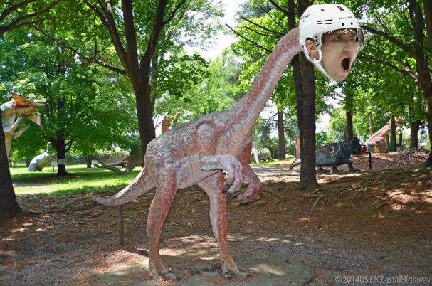 oviraptor-rmnb
