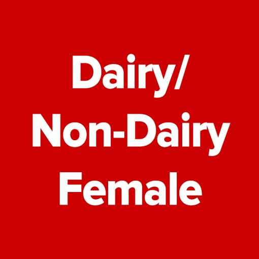 AA Dairy/Non-Dairy | Female - Entire Category