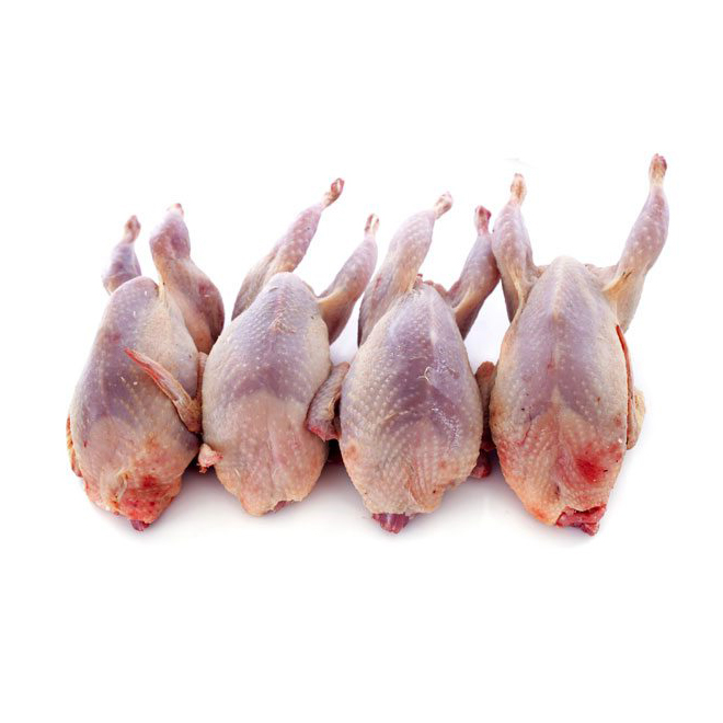 Quail Whole (Pack of 4)