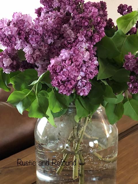 lilacs 6-13-19