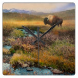 Bison Rustic Country Landscape Creek Buffalo Square Wall Clocks