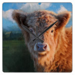 Brown Calf Cow Cattle Calves Cows Farm Landscape Square Wall Clocks
