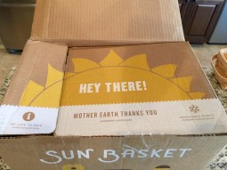 Sun Basket Box #1