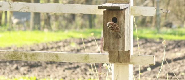 Spying On The New Neighbors