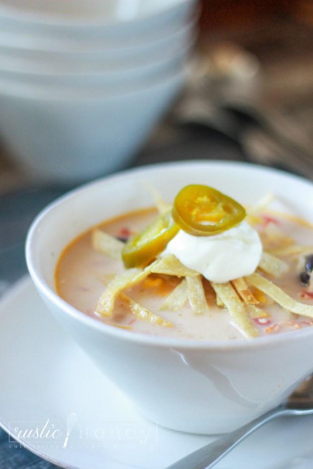 crockpot-chicken-tortilla-soup (3 of 9)