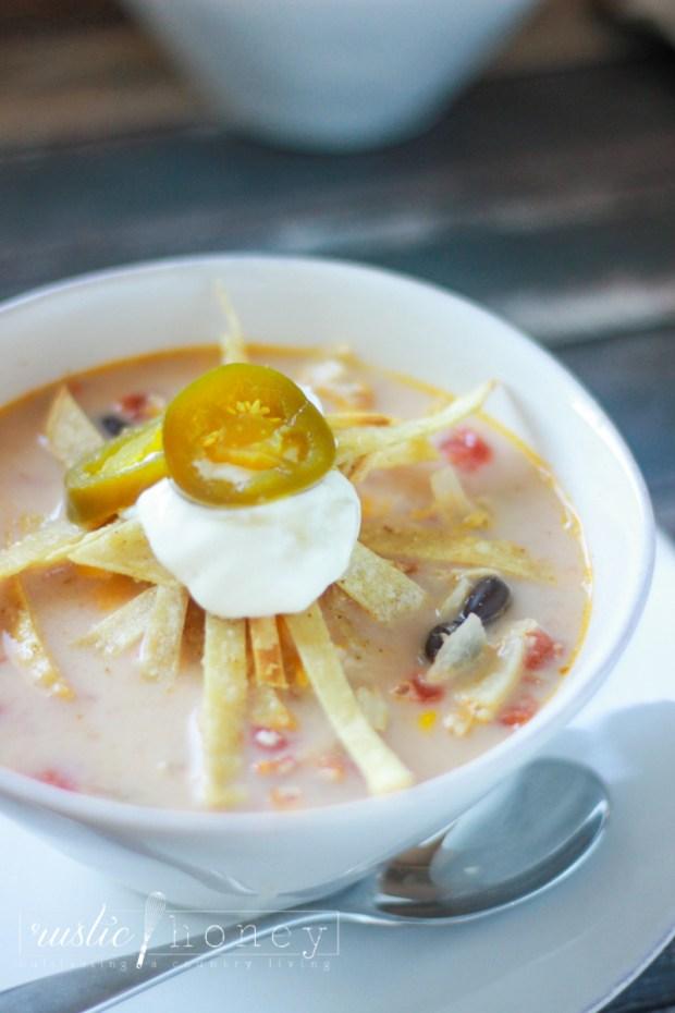 crockpot-chicken-tortilla-soup (4 of 9)