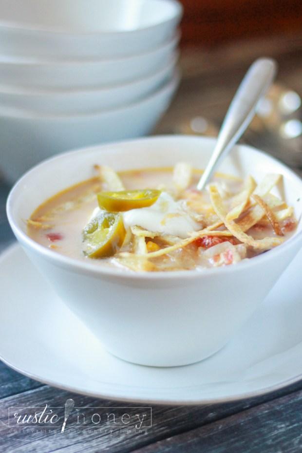 crockpot-chicken-tortilla-soup (9 of 9)