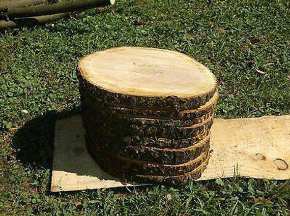 cherry wood slices