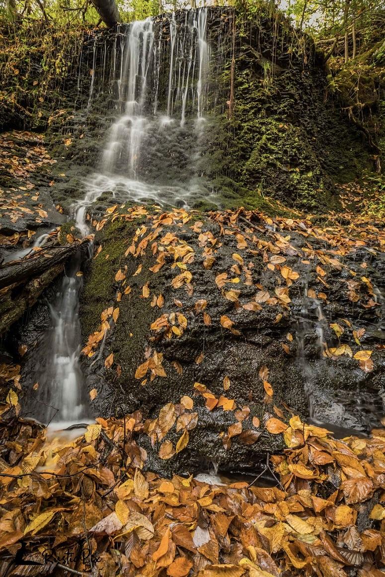raymondskill falls autumn f22 4s
