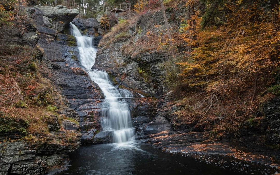 Raymondskill Falls:  Better Days Ahead?