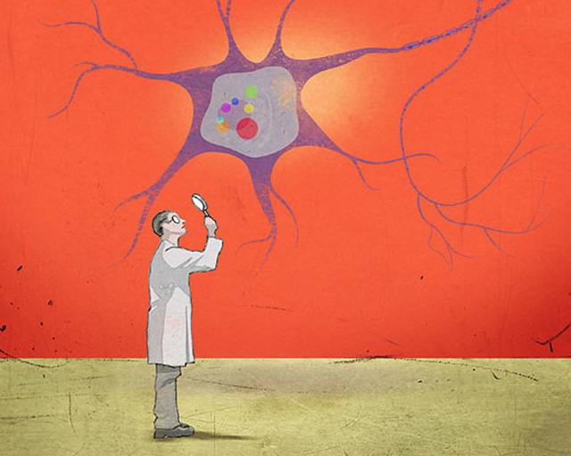 биоклей разработка картинка