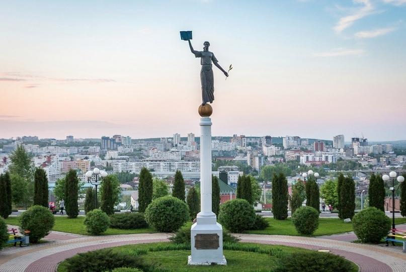 Белгород трансплантация картинка