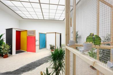 MMK Museum für Moderne Kunst, Frankfurt 2013
