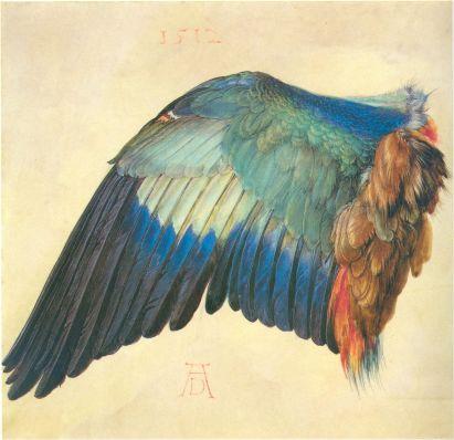 Aquarelle de 1512