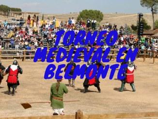 Combate Medieval