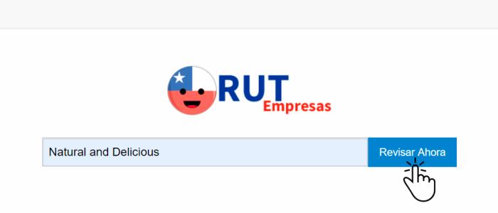 ¿Cómo saber los datos de una empresa, pymes, fundación, asociaciones en Chile.