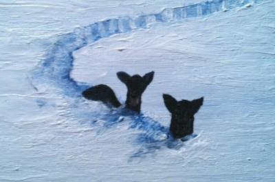 Rådyr i snøen