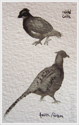 The quail and the pheasant