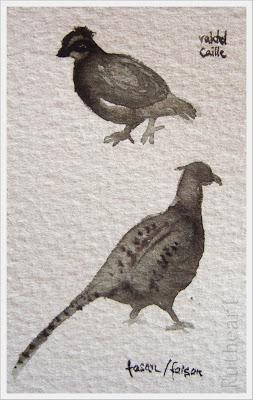 The quail and the pheasant