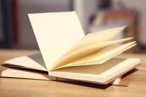 Notatbok med blanke ark, velg mellom brune og kremhvite sider-Rutheart
