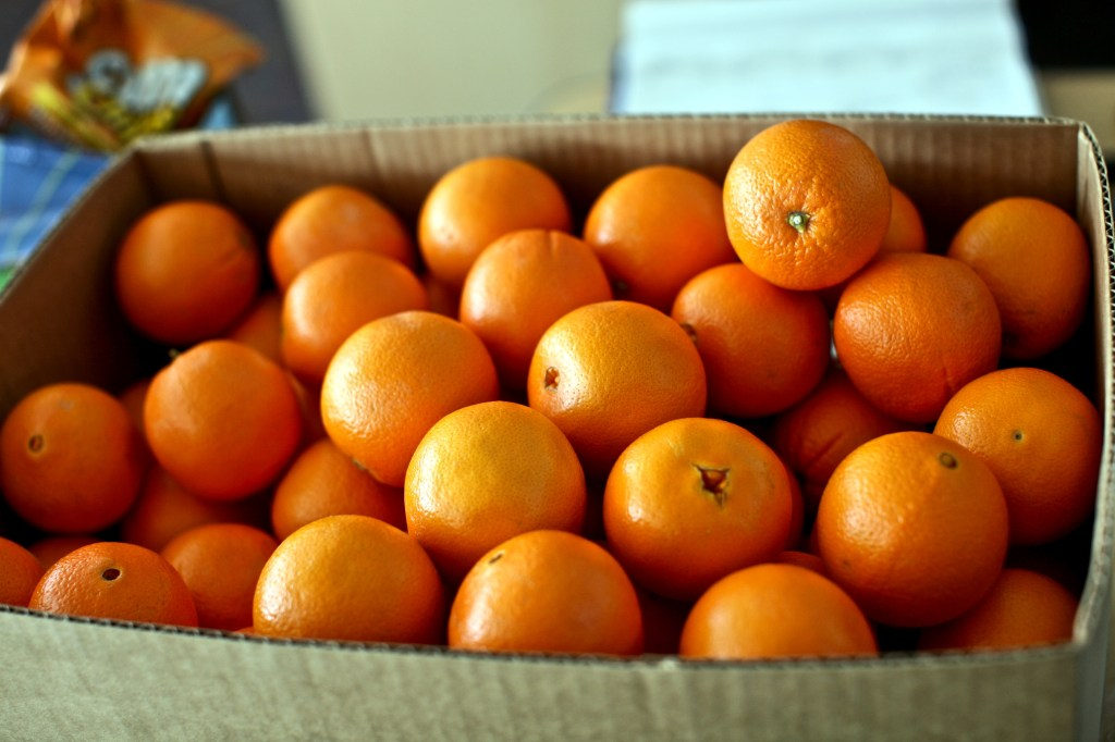 A box of oranges to stave off winter blues