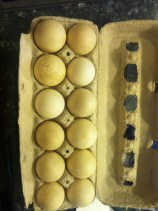 Farm Eggs from Ottomanelli's NYC