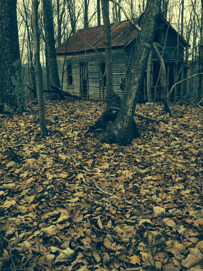 old Virginia Homestead