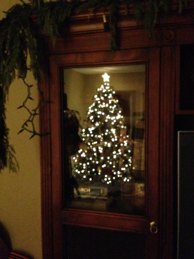 the tree in the glass door