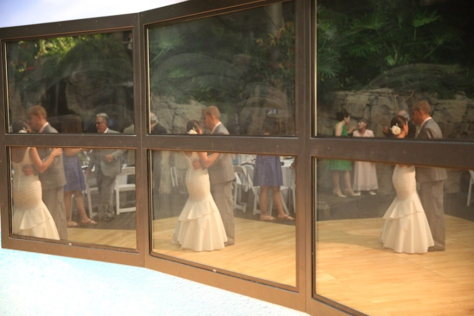 Celeste and Shawn first dance