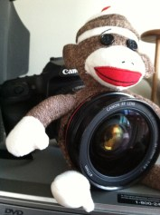 I gutted a Beanie Baby for my camera lens