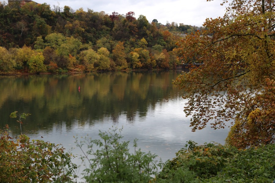 Monongahela River autumn