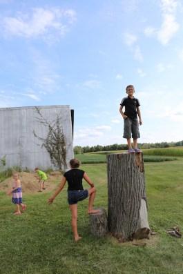 Michael atop stump