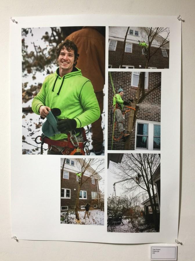 Tree Expert