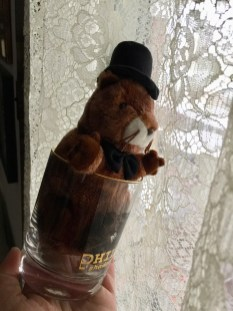 groundhog in glass