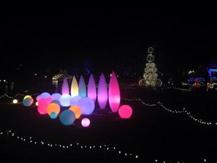 winter garden light
