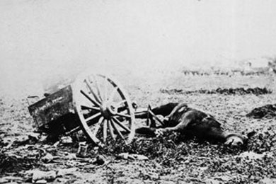 The total number of horses and mules killed during the Civil War has been determined to have been more than one million. Photo courtesy of Stones River National Battlefield