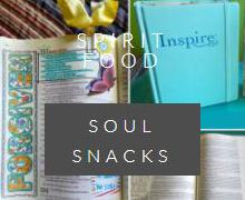 soul snacks category