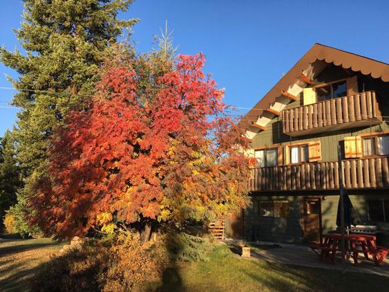 Ruth Lake Lodge Resort