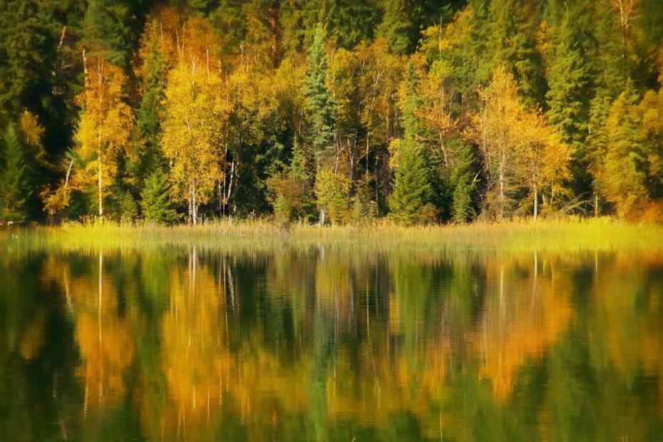 Ruth Lake Lodge Resort Fall Getaway