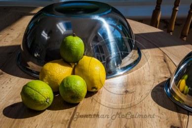 Citrus (3 of 3)