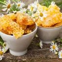 beeswax for anti-wrinkle cream