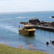 bardsey boat