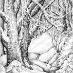 SnowyWoodland pen and ink