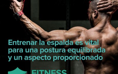 Rutina de espalda para ganar músculo y obtener una forma de V